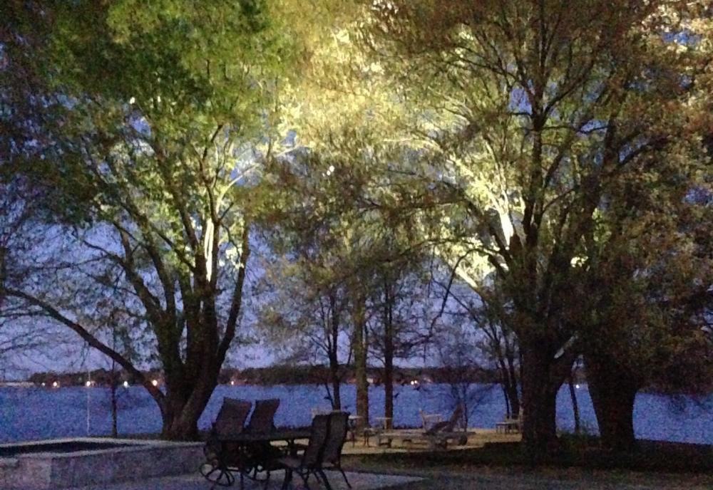 Under the Sunrise Point Oaks